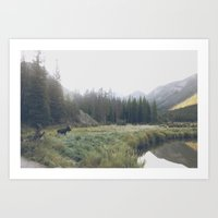 Morning Meadow Moose Art Print