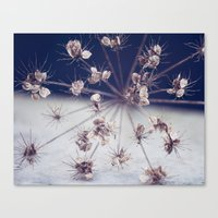Like Spinning Stars Canvas Print