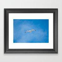 Great Black-backed Gull … Framed Art Print