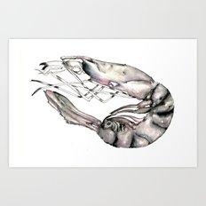 Planetary Shrimp Art Print