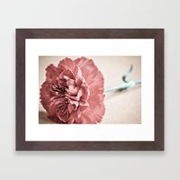 Vintage Carnation Framed Art Print