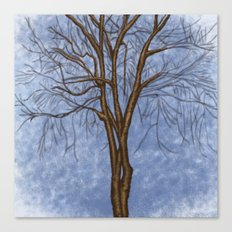 The Twisted Tree Canvas Print