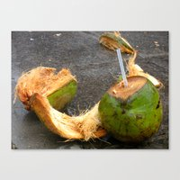 Lime In The Coconut Canvas Print