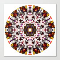 Donkey Flower Kaleidoscope  Canvas Print