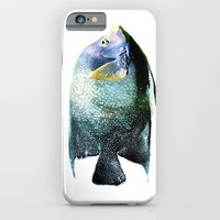 iPhone Cases featuring Blue Fish by Regan's World