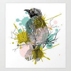 out bird Art Print