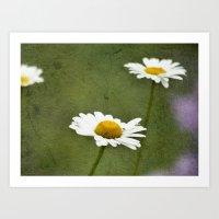 Daisy Chain 1 Art Print