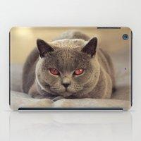 Superstar Diesel the Cat ! iPad Case