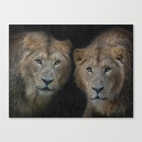 big brothers Canvas Print