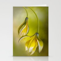 Tulipa Stationery Cards