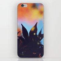 Autumn Autumn iPhone & iPod Skin
