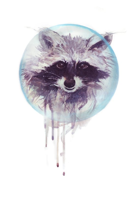 Hello Raccoon! Art Print