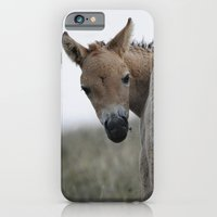 iPhone & iPod Case featuring Baby Przewalski's Horse by Ria Pi