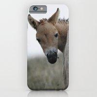 Baby Przewalski's Horse iPhone 6 Slim Case