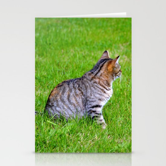 Orange and Tiger Cat Stationery Card