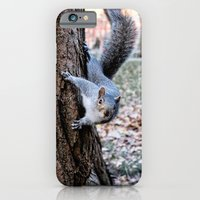iPhone & iPod Case featuring Washington Square Squirrel by Alev Takil