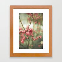 Nature's Candy Framed Art Print