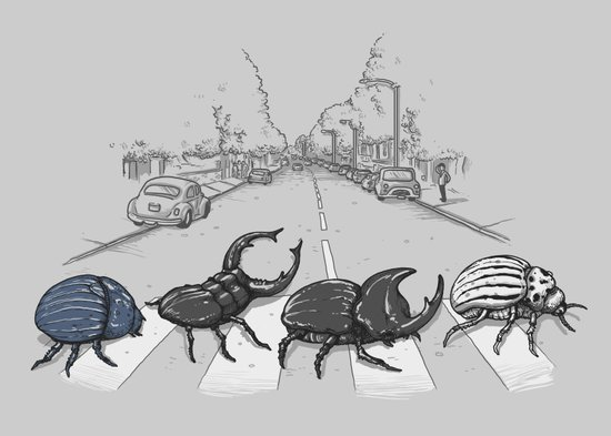 The Beetles Art Print