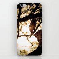 leaf art iPhone & iPod Skin