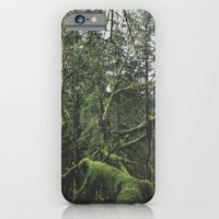 Moss Covered Trees iPhone 6 Slim Case