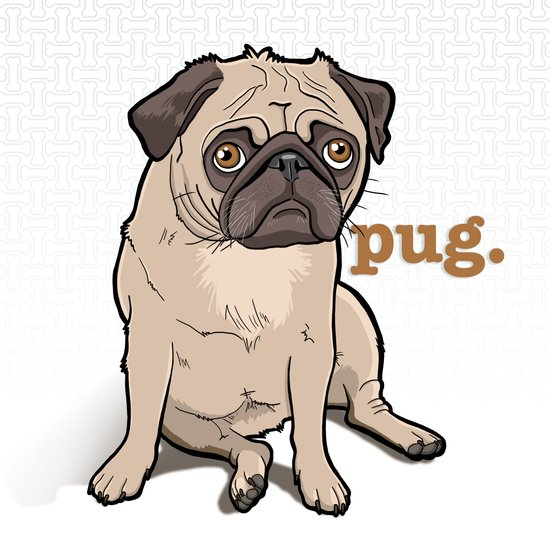 Lilly (pug) Art Print