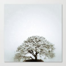 Tree #02 Canvas Print