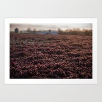 Field Cover Art Print