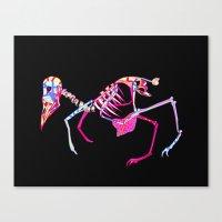 Bird Skeleton Canvas Print