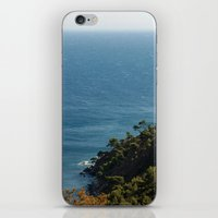 Sea landscape 1766 iPhone & iPod Skin