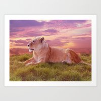 Young Male Lion Art Print