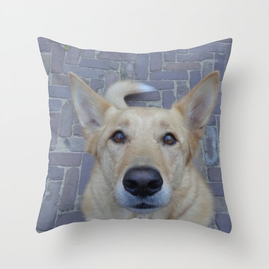 Treat? Throw Pillow