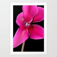 Bright Pink Flower. Art Print