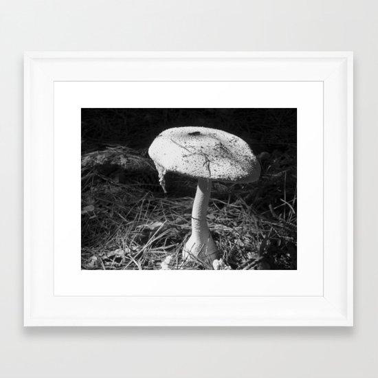 Shroom Framed Art Print