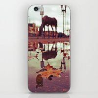 Roadside water iPhone & iPod Skin