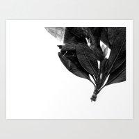 Evil Butterfly Art Print
