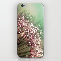 Dandelion Sunrise iPhone & iPod Skin