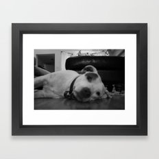 Dawg: 1 Framed Art Print