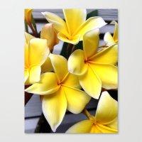 Image of Hawaii Canvas Print