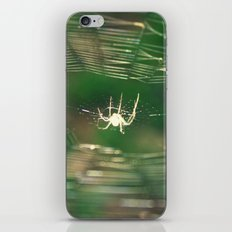 Stuck iPhone & iPod Skin