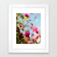 Hot Pink Puffs Framed Art Print