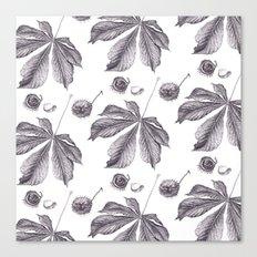 Floral pattern horse-chestnut Canvas Print