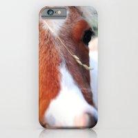 iPhone & iPod Case featuring li'l sebastian by Ryan Wyss