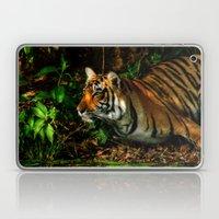 Bengal Beauty Laptop & iPad Skin