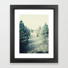 tree farm Framed Art Print