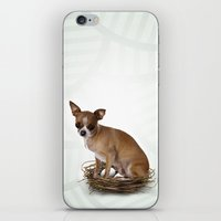 A Little Confused iPhone & iPod Skin