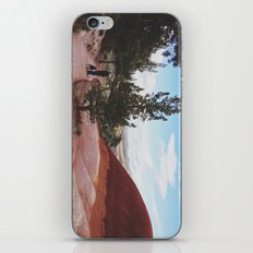 Man and His Dog at Painted Hills  iPhone & iPod Skin