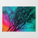 Behind The ol' Crape Myrtle Canvas Print