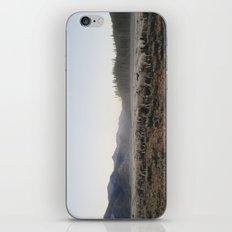Sheep Dust iPhone & iPod Skin