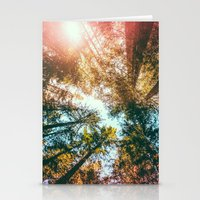 California Redwoods Sun-rays and Sky Stationery Cards