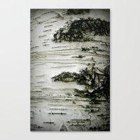 Canvas Print featuring Birch Woods by September Wren